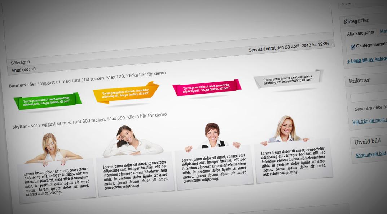 temafunktioner-CSS-boxar-web